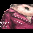 Kutyás pulóver szürke - iDO